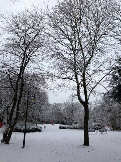 デュッセルドルフ 冬