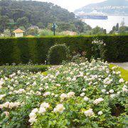 緑と花に囲まれて